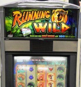 running-wild-williams-bluebird-1-slot-machine-sc