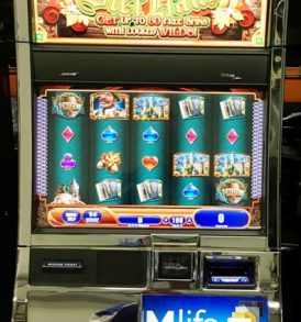 Bier Haus Williams Bluebird 2 Slot Machine by WMS for sale