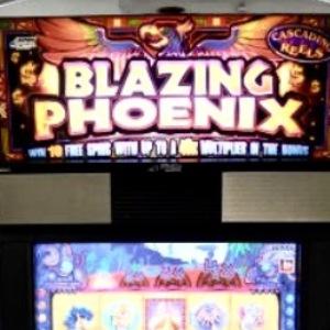 blazing-phoenix-williams-bluebird-1-slot-machine-sc