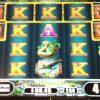 exotic-treasures-williams-bluebird-2-slot-machine-1