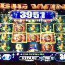 exotic-treasures-williams-bluebird-2-slot-machine-3