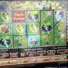 fairys-fortune-williams-bluebird-1-slot-machine-4