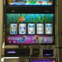 gold-fish-2-williams-bluebird-2-slot-machine-3