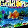 gold-fish-2-williams-bluebird-2-slot-machine-5