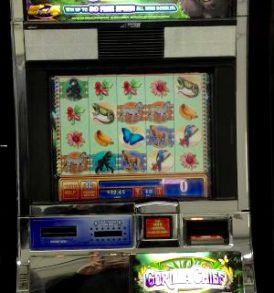 Gorilla Chief Williams Bluebird 1 Slot Machine by WMS for sale