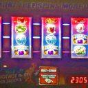 reels-of-dublin-williams-bluebird-1-slot-machine--2