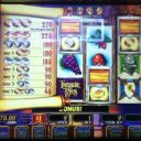 ring-quest-williams-bluebird-1-slot-machine--3