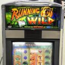 running-wild-williams-bluebird-1-slot-machine-sc