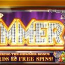 shimmer-williams-bluebird-1-slot-machine--4