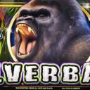 silverback-williams-bluebird-1-slot-machine--3