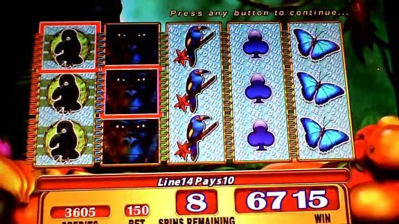 silverback-williams-bluebird-1-slot-machine--4