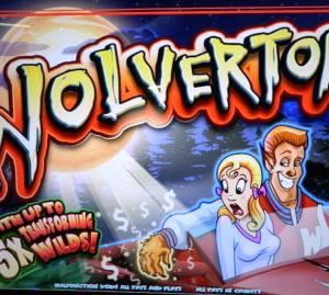 wolverton-williams-bluebird-1-slot-machine--6