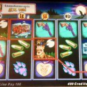 wolverton-williams-bluebird-1-slot-machine--7